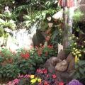 Flower Market at Burnham Park, Baguio City
